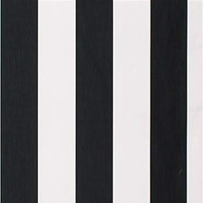 Ebony Stripes Decorator Fabric by Kravet