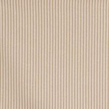 Raffia Stripes Decorator Fabric by Fabricut