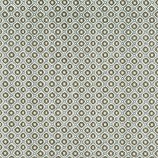 Moss Decorator Fabric by Robert Allen /Duralee