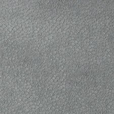267213 DU15800 173 Slate by Robert Allen