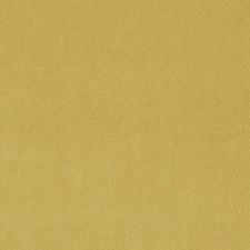 267581 15619 632 Sunflower by Robert Allen