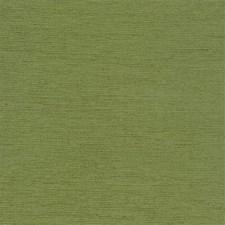 Aloe Solids Decorator Fabric by Kravet