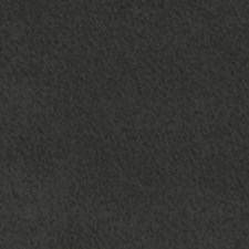 274182 15278 79 Charcoal by Robert Allen