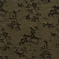 Sesame Botanical Decorator Fabric by Kravet