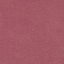 275379 DF16038 44 Old Rose by Robert Allen