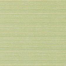 276201 DW16053 399 Pistachio by Robert Allen