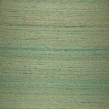 Foliage Solid Decorator Fabric by Fabricut
