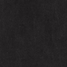 279127 HV15975 318 Bark by Robert Allen