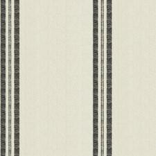 Blanca Stripes Decorator Fabric by S. Harris