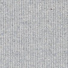 Blue Decorator Fabric by Robert Allen /Duralee