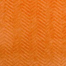 287215 36165 36 Orange by Robert Allen