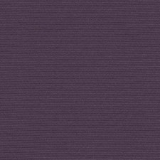 289773 32810 217 Eggplant by Robert Allen