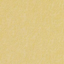 290043 32811 632 Sunflower by Robert Allen