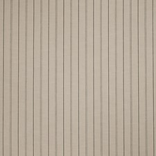 Raven Stripes Decorator Fabric by Fabricut