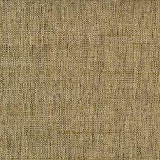 301226 51246 597 Grass by Robert Allen