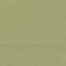 Celery Decorator Fabric by Schumacher