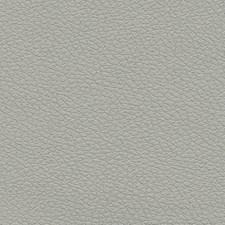 Quicksilver Decorator Fabric by Schumacher