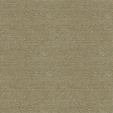 Ficus Texture Decorator Fabric by Kravet