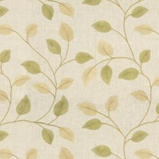 Reed Botanical Decorator Fabric by Kravet