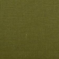 308730 32538 22 Olive by Robert Allen