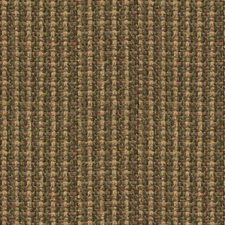 Grass Stripes Decorator Fabric by Kravet