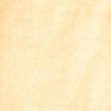 Butternut Solid Decorator Fabric by Fabricut