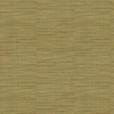 Green/Light Green Solids Decorator Fabric by Kravet
