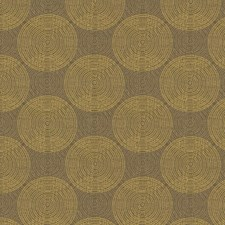 Mimosa Modern Decorator Fabric by Kravet