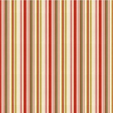 Hibiscus Stripes Decorator Fabric by Kravet
