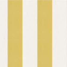White/Yellow/Gold Stripes Decorator Fabric by Kravet