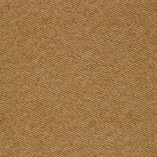 Vicuna Decorator Fabric by Schumacher