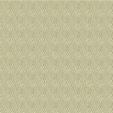 Champagne Solid W Decorator Fabric by Kravet