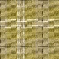 Quince Check Decorator Fabric by Kravet