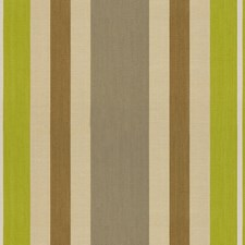 Quince Stripes Decorator Fabric by Kravet