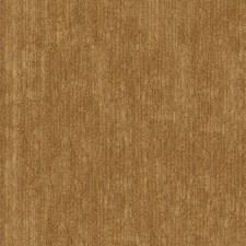 Golden Solids Decorator Fabric by Kravet