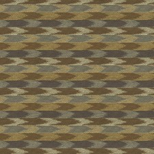 Shadow Ethnic Decorator Fabric by Kravet