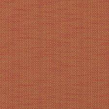 329398 36249 219 Cinnamon by Robert Allen