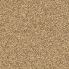 Camel/Neutral Solids Decorator Fabric by Kravet