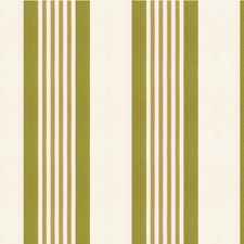 Light Green/Beige/Ivory Stripes Decorator Fabric by Kravet