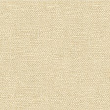 White/Ivory Solids Decorator Fabric by Kravet