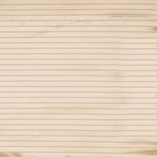 Beige Solid Decorator Fabric by Fabricut
