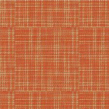 Tulip Solids Decorator Fabric by Kravet
