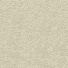 Mineral Animal Skins Decorator Fabric by Kravet