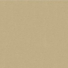 Beige Texture Decorator Fabric by Kravet