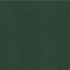Sea Green Solids Decorator Fabric by Kravet