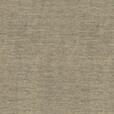 Beige/Silver Metallic Decorator Fabric by Kravet
