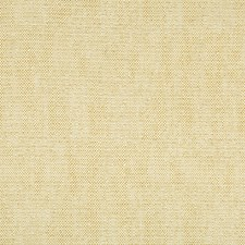 Brown/Yellow/White Solids Decorator Fabric by Kravet