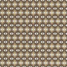Tiger Eye Modern Decorator Fabric by Kravet