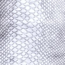 Silver Animal Decorator Fabric by Fabricut