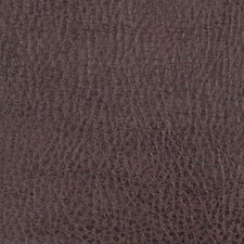 Leather Solid Decorator Fabric by Fabricut